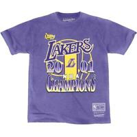 Los Angeles Lakers Mitchell & Ness NBA Vintage 2001 Champs T-Shirt - Faded Purpl