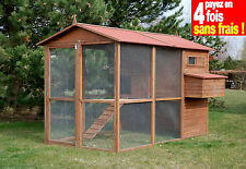 POULAILLER LARGE SQUARE BOIS 10/12 POULES+KIT OFFERT-100% SAPIN FINLANDE AS4497