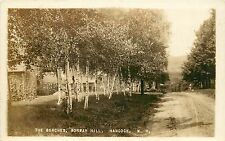 1910-1920 Real Photo Pc; The Birches, Norway Hill, Hancock Nh Hillsborough Co.