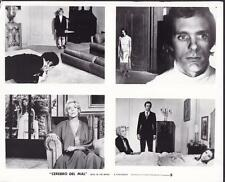 Stefania Sandrelli Keir Dullea Devil In The Brain 1972 movie photo 28516