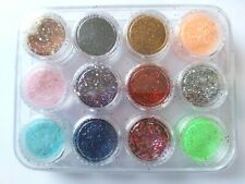 12 X 3g MULTI SIZE PRETTY GLITTERS IN A CASE - UK SELLER - BARGAIN !!!!!