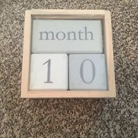 Child to Cherish Baby Monthly Milestone Photo Age Blocks, Grey