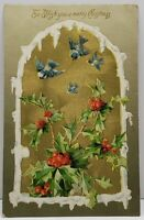 Christmas Snow Capped Golden Window Bluebirds Holly Embossed 1908 Postcard G13