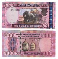 UNC RWANDA 5000 Francs (2004) P-33 depicting a Gorilla