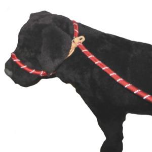 Hi Vis Figure of 8 Dog Slip Lead / Head Collar  - Stop Pulling - Powerful Dogs
