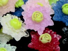 30 Pcs Mixed Colour Resin Flower Flat Back Embellishments Craft Cabochons P121