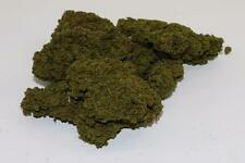 OO Scale Javis Premier Tree Folisge Light Green Jtree1 FNQHobbys (JV069)