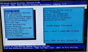 Hp ProLiant ML310e Gen 8 v2, Server, Intel Xeon CPU E3-1220 v3, 16GB