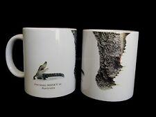 Australian Souvenir Porcelain Nosey Mug Cup Australia Crocodile Collection Box