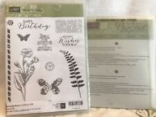 Stampin Up BUTTERFLY BASICS clear stamps & 3 BUTTERFLIES Thinlits DIES ~ flowers
