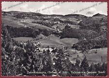 VERONA BOSCO CHIESANUOVA 17 CONTRADA ZOCCHI Cartolina FOTOGRAFICA viaggiata 1959