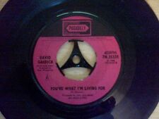 David Garrick - Dear Mrs Applebee - Vinyl Single (Rare)