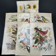 1-7 Arthur Singer Numbered Prints Birds Vintage Botanicals from the 1950's