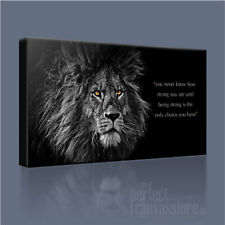 LION KING OF THE JUNGLE +QUOTE SUPERB HAND-CRAFTED ICONIC CANVAS PRINT + UPGRADE