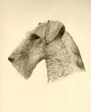 Airedale In Sepia~counted cross stitch pattern #1734~Vintage Animals Dogs Chart