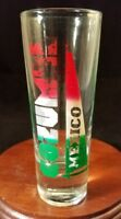 Collectible Barware Shooter Shot Glass Cozumel New Mexico