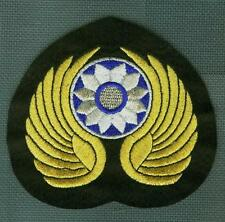 Seconde Guerre Mondiale USAAF Avg Flying Tigres 飛虎隊 Chine Burma Inde Cbi