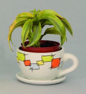 Pflanz Tasse modern Neu ohne Unterteller