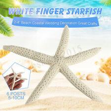 "6Pcs Natural 2-4"" White Finger Starfish Beach Coastal Wedding Craft Home Decor"