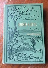 Bird - Life - F. M. Chapman - 1900 - early copy with Thompson plates/drawings