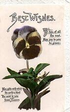 Vintage Birthday Greetings Postcard. Pansy. Flower  (G1)