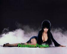 ELVIRA Mistress of Dark 8x10 Lab Photo COLOR SEXY Cassandra Peterson Smokey