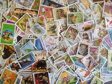 500 Different Animals on Stamps Collection