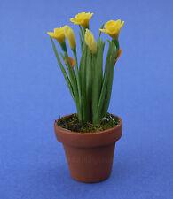 Miniature Dollhouse Yellow Daffodils Plants Flowers 1:12 Scale New