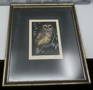 JACK COUTU SIGNED LIMITED EDITION ETCHING, BARRED OWL, FRAMED & MATTED, 1970
