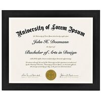 Americanflat Document Frame - Made to Display Certificates 8.5x11 Inch