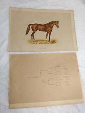 1889 Chromolithograph VERMOUTH Racehorse + Bloodline Sheet LES CHEVAUX DE COURSE