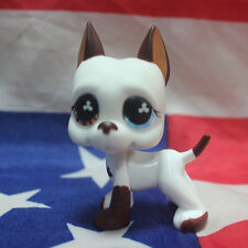 Rare LPS Littlest Pet Shop Great Dane DOG Blue Eye Brown Rare #577