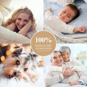 Fleece Blanket Queen Size Fuzzy Soft Plush Blanket 330GSM for All Season Spring