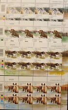 CYPRUS 2012 4 FULL SHEETS OF HORSES ISSUE MNH **
