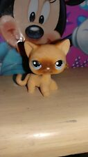 Littlest Pet Shop Cat Short hair 318 Brown Fuzzy  Authentic LPS