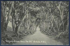 Mahogany Avenue, Cherry Tree Hill, Barbados, B.W.I.