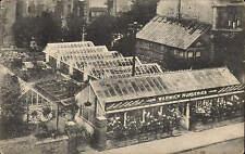 ? Warwick. L. Rogers Warwick Garden Nurseries.