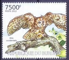 Spotted Owl, Birds of Prey, Burundi 2012 MNH