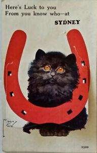 Postcard: Cat and horseshoe: Lift-up flap, concertina foldout b&w photos