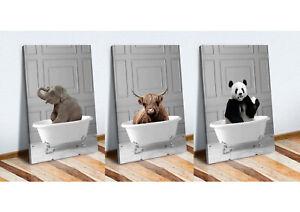 ANIMALS IN BATH HIGHLAND COW ELEPHANT PANDA CANVAS WALL ART PRINT ARTWORK FRAMED