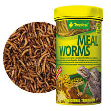 TROPICAL MEAL WORMS 250ml Dried larvae of mealworms