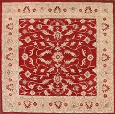 Hand-tufted Classic Floral All-Over Square 10x10 Kaashaan Agra Oriental Area Rug