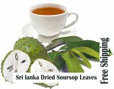 100 tea Bags Graviola Leaf Tea (Soursop) Annona muricata Premium Quality