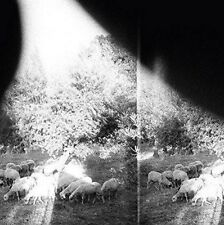 Godspeed You! Black Emperor - Asunder, Sweet And Other Distress (NEW CD)