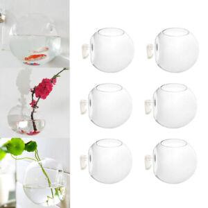 6 x Wall Hanging Glass Planters Air Plant Pots Flower Vase Indoor Decor 10cm