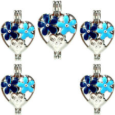 Charm Diffuser Pearl Cage Enamel Butterfly Heart Locket Rainbow Color 5X-K1005
