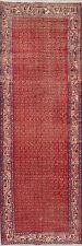 """Vintage One-of-a-Kind Boteh 10 ft Runner Botemir Wool Rug 10' 5"""" x 3' 7"""""""