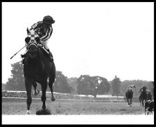 "SECRETARIAT GREAT 8X10 ""HEAD ON"" BELMONT STAKES HORSE RACING PHOTO!"