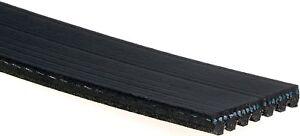 Serpentine Belt-Standard ACDelco Pro 7K822