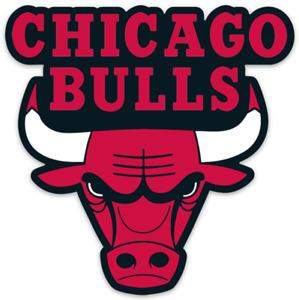 Chicago Bulls Logo Type Die-cut MAGNET